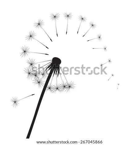 Black vector dandelion - stock vector