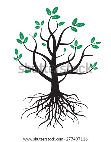 Black vector tree, roots and green leafs - stock vector