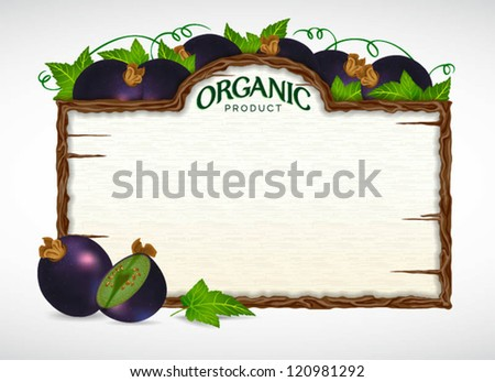 blackcurrant menu board - stock vector