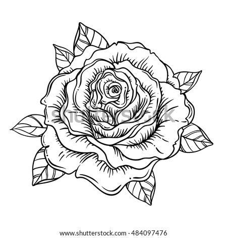 Rose Tattoo Stock Images Royalty Free Images amp Vectors Shutterstock
