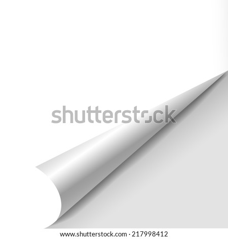 blank sheet of paper with page curl over white - stock vector