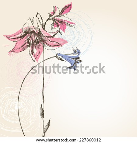 Blooming lily flower greeting card  - stock vector