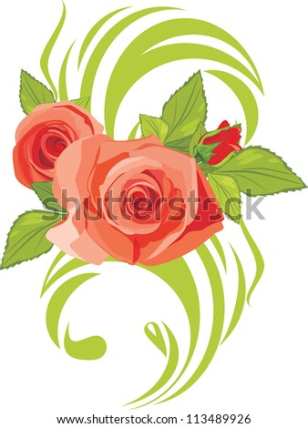 Blooming pink roses. Decorative element. Vector - stock vector