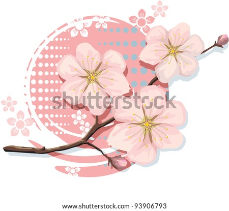 Blossom Sakura Cherry - stock vector