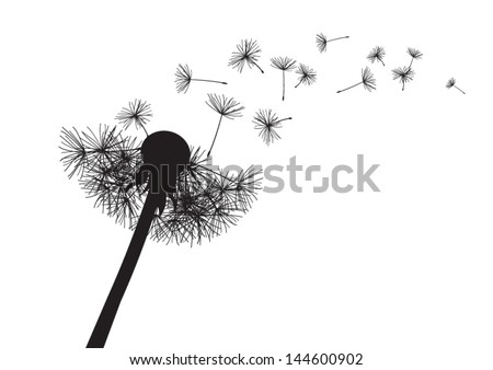 blow dandelion. vector - stock vector