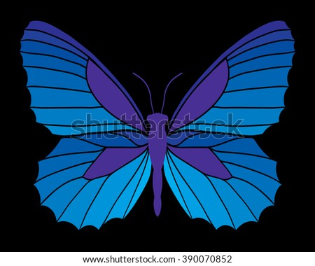 Blue butterfly isolated on black background. Vector illustration. - stock vector