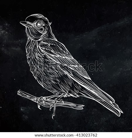 Blue Sialia. Vector illustration isolated on black background. Detailed drawing of a bird - stock vector