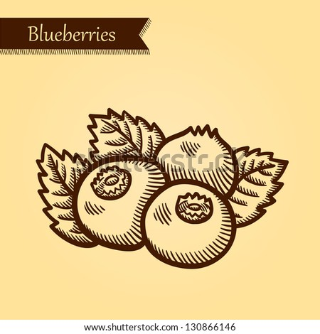 Blueberriess, fresh fruits. Retro style. Easily editable vector. Vegetable on the yellow retro background. Isolated vector. - stock vector