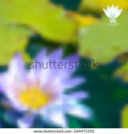 blurred nature background of lotus flower floating in pond. Vector illustration,  spirituality vector - stock vector