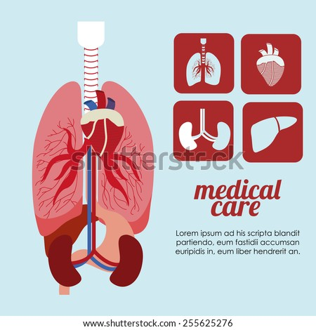 body,healthy desing over, ligth blue background, vector illustration. - stock vector