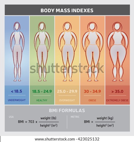 Height Chart Stock Images, Royalty-Free Images & Vectors ...