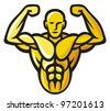 Bodybuilder - stock