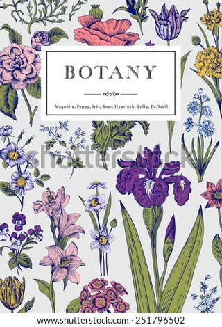 Botany. Vintage floral card. Vector illustration of style engravings. Colorful flowers with blue outline. - stock vector