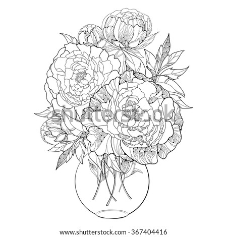 Bouquet with five ornate peony flower and leaves in the round transparent vase isolated on white background. Floral elements in contour style. - stock vector