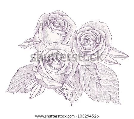 Rose Bouquet Drawing Bouquet With Three Roses