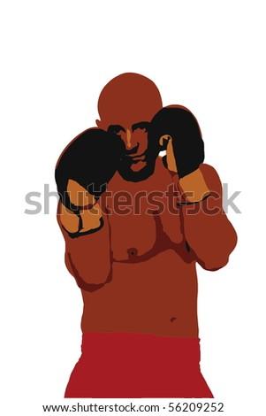 Boxer - stock vector