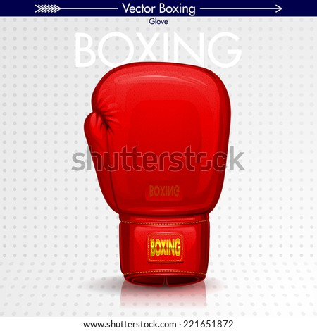 Boxing Glove, Detailed Illustration - stock vector
