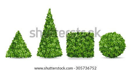 Boxwood shrubs of different forms. Topiary in the shape of a pyramid, sphere, cube. Decorative elements of the garden landscaping. - stock vector