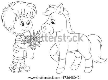 Boy feeds a pony - stock vector