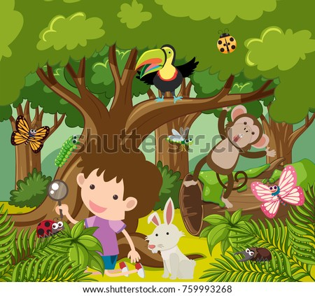 Wild Animals In Forest