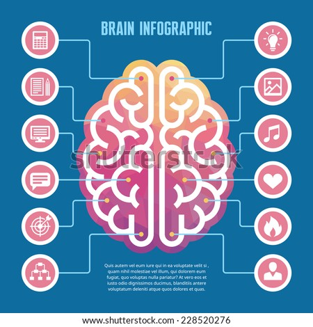Brain infographic - vector concept illustration with icons. Left and right human brain vector illustration for presentation, booklet, web site and other projects. Brain infographic template. - stock vector