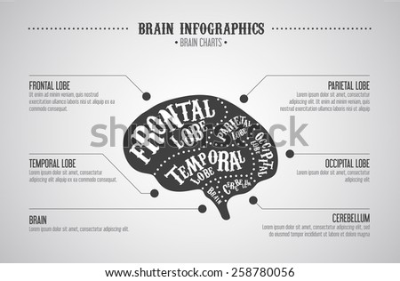 Brain infographics concept. Vector brain cuts diagram in vintage style.  - stock vector