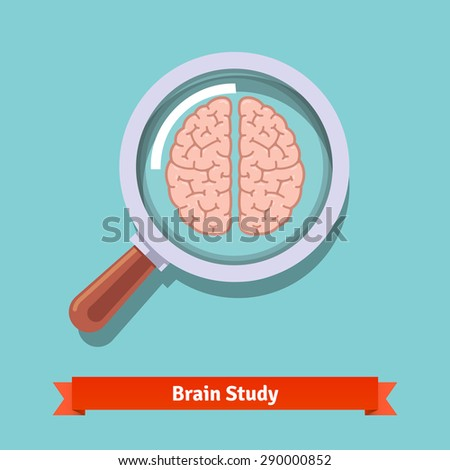 Brain research and education concept. Zooming magnifying glass. Flat vector illustration. - stock vector
