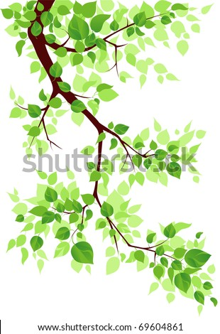 Branch - stock vector