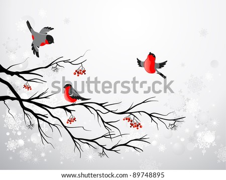 Branch and birds bullfinch with space for text - stock vector