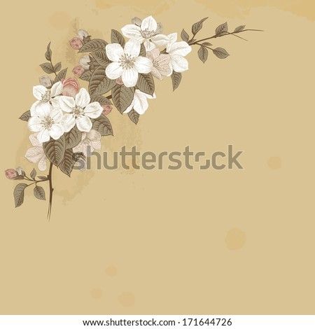 Branch blossoming apple. White and pink flowers with gray leaves on a beige background.  - stock vector
