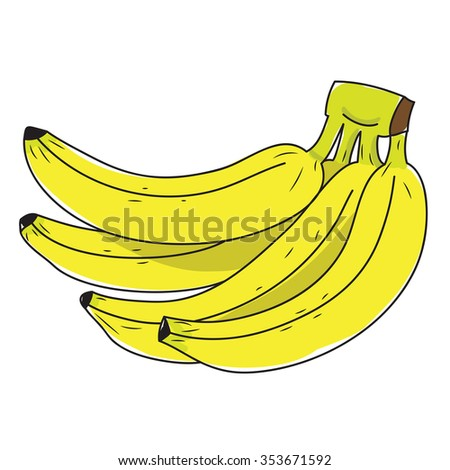 branch of bananas on white background - stock vector