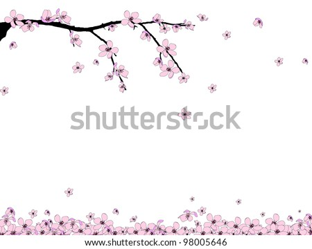 Branch of beautiful seasonal pink cherry blossom - stock vector