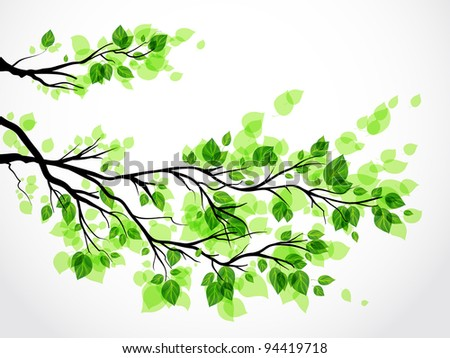 Branch with green leaves eps 10 - stock vector