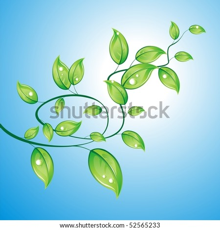 Branch with leaves - stock vector
