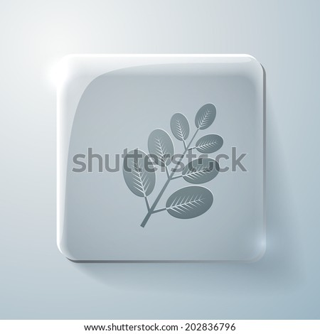 branch with leaves. the symbol of biology. Glass square icon with highlights - stock vector