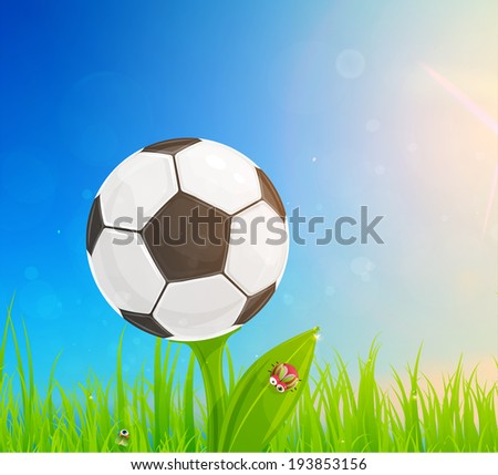 Brazil Summer 2014 Vector, Soccer Ball for Football Design.