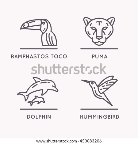 Brazilian culture linear icons set. Animals Of South America. Vector illustration of Toucan, Puma, Hummingbird and Dolphin.