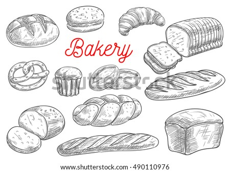 Bread sorts and bakery products. Rye bread, ciabatta, wheat bread, muffin, bun, bagel, sliced bread, french baguette, croissant, pretzel, biscuit. Vector pencil sketch