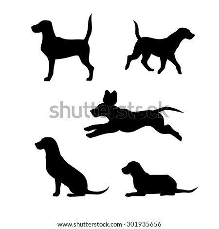 Breed of a dog beagle vector icons and silhouettes. Set of illustrations in different poses. - stock vector