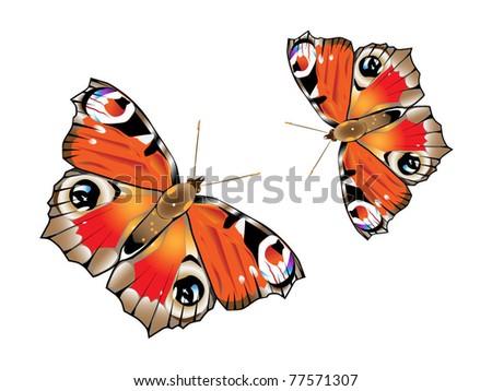 Bright butterflies - stock vector