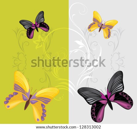 Bright butterflies on the decorative background. Vector