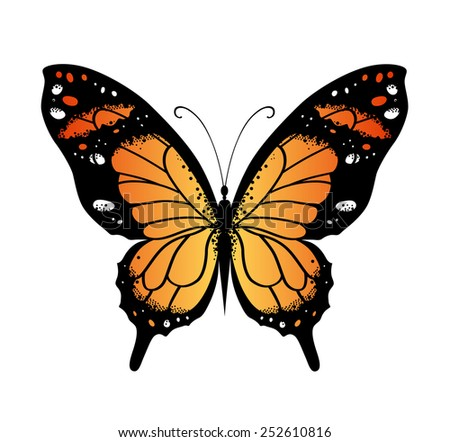 Bright color vector butterfly for decoration design