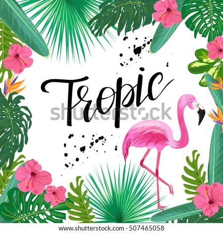 Bright Template Tropical Plants Flowers Pink Stock Vector ...