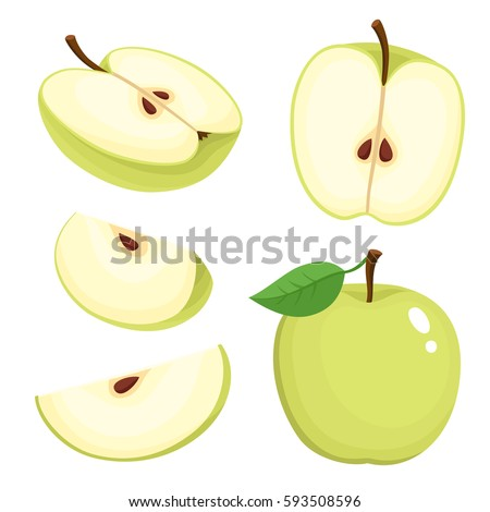 Bright vector set of colorful half, slice and segment of juicy green apple. Fresh cartoon apples on white background.