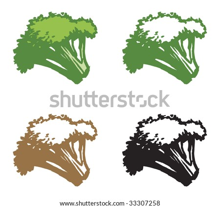 Broccoli - stock vector