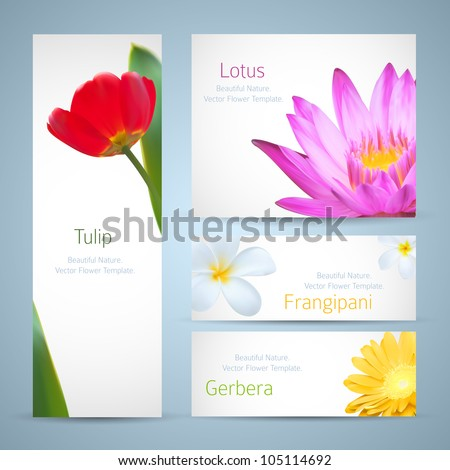 Brochure design, water lily flower, frangipani and tulip vector template. Exotic tropical flowers invitation card layout. Background design for banners - stock vector