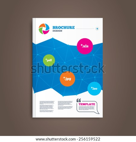 Brochure or flyer design. Document icons. File extensions symbols. PDF, XLS, JPG and ISO virtual drive signs. Book template. Vector - stock vector
