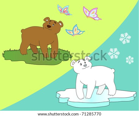 brown bear and polar bear - stock vector