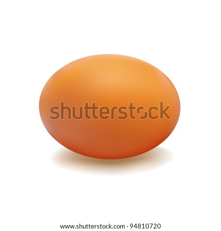 Brown egg with a light shadow on white background - stock vector