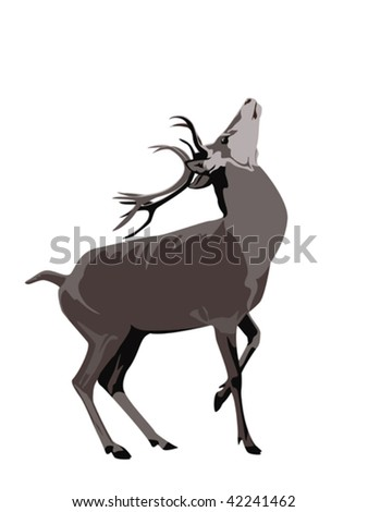 buck deer - stock vector